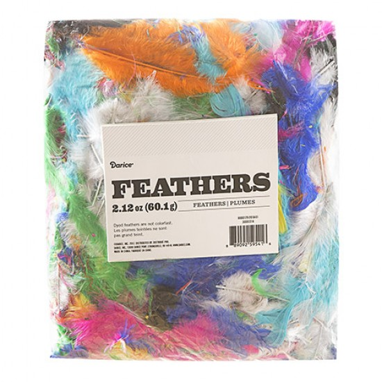 Feathers Mixed Colours 2 To 5 Inches, 60.1 Grams - Large pack
