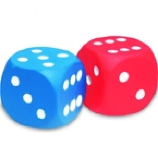 Foam Dice Classroom Resources