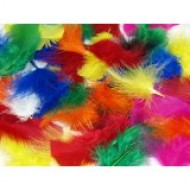 Feathers Mixed Colours - Large pack