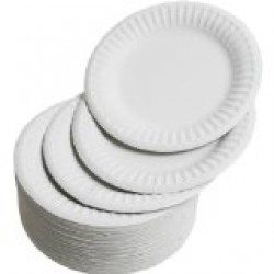 "6"" Paper plates, pack 100"