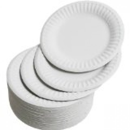 "7"" Paper plates pack 100 Arts & Crafts"