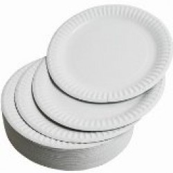 "9"" Paper plates pack 100"